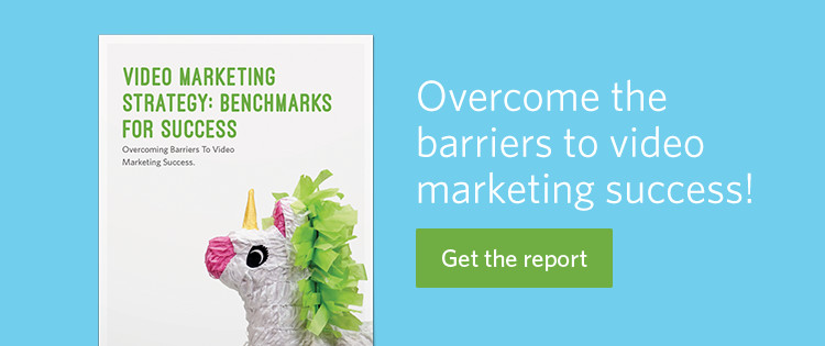 Benchmarks Video Marketing Success